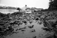 The cleanup from the Exxon Valdez oil spill in Alaska's Prince William Sound ended up costing Exxon around $3 billion and led the company to implement a philosophy of safety. A former official at Shell says of Exxon's attitude toward safety: 'It oozes from the pores of everyone.'