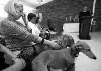 Louise Jacobson wipes away tears and pets a greyhound as the Rev. Chip Hastings conducts a memorial service for four abused dogs who died a week after rescue.