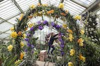 Breathtaking displays can thrive inside the Princess of Wales Conservatory, where it's humid and tropical.Oli Scarff - Getty Images