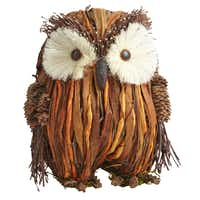 NATURAL OWL STANDING