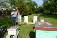 Jay Houston stands near his bee hives in Garland. Houston and his friend Phil Lewis, who have been beekeeping since January 2013 as a hobby after retirement.Rose Baca  -  neighborsgo staff photographer