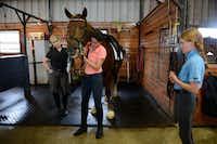 Head trainer Lisa Blackmon (left) watches Peyton, 16, put a bridle on Irnas, while Sophie, 11, looks on.Rose Baca - neighborsgo staff photographer