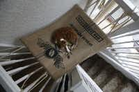 A cat lies on a hammock in the newly opened Lady Dinah's Cat Emporium in London, Friday, April 4, 2014. Feline company is exactly what one of Londons newest cafes is offering - and stressed-out city-dwellers are lapping it up. People do want to have pets and in tiny flats, you cant, said cafe owner Lauren Pears, who opened Lady Dinahs Cat Emporium last month in an area east of the citys financial district.Sang Tan  -  AP