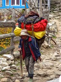 A porter carrying gear for trekkers on the trail to Mount Everest. A standard porter load is 65 pounds, typically carried via a strap around the porter's forehead.John Flinn
