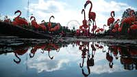 The Chinese Lantern Festival continues through Jan. 6, at Fair Park Lagoon in Dallas.