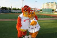 Game for some fun? Kids likely will find it at the bounce houses, speed pitch and playgrounds open throughout the game at Dr Pepper Ballpark along with Frisco RoughRiders' mascots Deuce and Daisy.Frisco RoughRiders