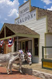 Nip and Tuck have their Fourth of July party hats on and are ready some old-fashioned fun at Dallas Heritage Village.