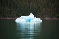 Like clouds, icebergs inspire creative interpretations of their fantastical shapes.April Orcutt