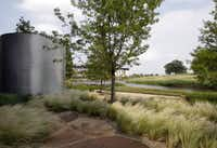Native prairie grasses surround rain containers that collect runoff, one of the property's green features.