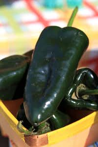 Poblano peppers from Rae Lili Farm in Cooper, Texas, at the White Rock Local Market, on Sept. 07, 2013 in Dallas.
