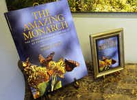 Dallas boutique publisher BenBella Books published The Amazing Monarch.
