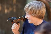 Joshua Klein was quite surprised after his lorikeet was ambushed from behind during the first Zoo Tunes at the Dallas Zoo on Saturday, August 11.