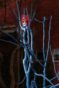 Jonas likes trees. Right now, she's liking electric blue trees, like this piece in her front yard.