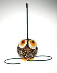 An owlish orb is packed with high-energy tidbits such as pecans, almonds, apricots, apples and blueberries. $10.99 at Wild Birds Unlimited, Dallas. Feeder extra.