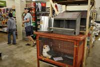 Customers walk past the chicken section at Gecko Hardware in Northlake Shopping Center.