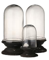 Clear as a bell: Cloches and bell jars — spotted everywhere from Nicholson-Hardie Garden Shop in University Park to Society in Bishop Arts and White Elephant Antiques on Riverfront — can transform any small waterproof bowl or planter into a conservatory. Terrain's Column Cloche (small, $30; large, $88) is at shopterrain.com.