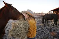 Kristyn Harris feeds her horses early in the morning at her home in McKinney, TX. Kristyn Harris is a cowboy/country performer who sings and yodels. She sometimes performs singing on horseback. She'll be performing at the National Cowboy Poetry Gathering later this month.