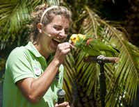 Lacey Zeno tries to get Sundance, a double yellow-headed parrot, to talk during a Wings of Wonder show at the park.