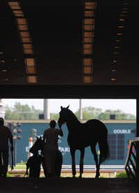 For now, betting on horse races is the only gambling allowed at the Grand Prairie track. But there is a real possibility that the state, facing a large budget shortfall, may change its laws to allow gaming at horse tracks.