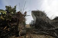 A city of Garland truck dumped a load of storm debris at the Hinton Landfill. More than 7,500 tons of brush debris has been dumped since November, over half of what is received in a typical year.