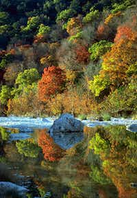 The 2,174 acres of Lost Maples State Natural Area provides fall color 75 miles east of San Antonio.Texas Parks & Wildlife