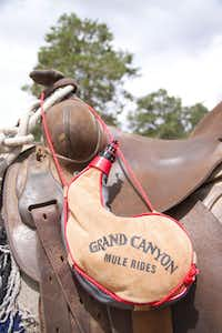 Grand Canyon visitors can ride along the rim for spectacular views up and down the canyon and ten miles across to the North Rim, all while on a mule. Each rider gets a soft-sided canteen to take on the tour, and to take home.