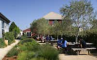 Visitors can picnic in the garden of Cowgirl Creamery in Point Reyes Station.Michael Kamerick  -  Special Contributor