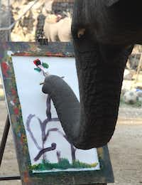 At the Maesa Elephant Camp in Chang Mai, Thailand, five elephants show off their artistic side by painting pictures on Jan. 21, 2013. This elephant is painting an elephant from behind with his trunk in the air holding a rose with grass under his feet. The painting was eventually sold for $100 (US dollars).