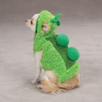 The green plush one-piece from PetEdge is secured with Velcro. It comes in five sizes from extra-small to extra-large. Suggested retail from $9.99 to $14.99.