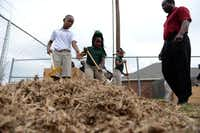 Second-grade students Jumoke Henry (left) and Jamyah Anderson rake leaves to be used for compost inside the teaching garden at The Meadows Elementary School.ROSE BACA  - neighborsgo staff photographer