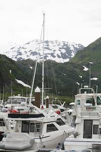 This photo taken July 9, 2012, shows boats in the harbor of the tiny community of Whittier, Alaska, where most of the 180 year-round residents live in a large condo, a former Army garrison. Most cruise ship passengers leave for Anchorage once their ships dock in Whittier, but those who stay can kayak, hike trails or visit a few tourist shops, cafes and restaurants.