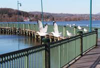 Newport, Vermont is located on the banks of Lake Memphremagog. A walking path allows you to take in the impressive sites regardless of the season.
