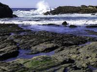Point Lobos is hard for photographers to resist.John Palmer -  California State Parks
