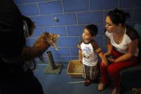 Dallas Animal Services employee Eddie Hooper brings in a kitten to visit with Janet Garcia and her 3-year-old son, Simao. The shelter has been praised for improving animal care.