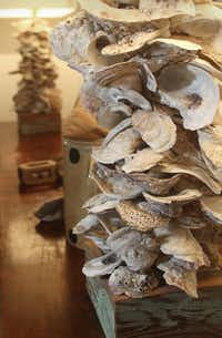 A pair of lamps made out of oyster shells in Williams' dining roomKELLEY CHINN  -  Special Contributor