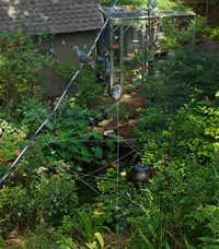 A cat's cradle of string spanning the writer's pond is intended to deter future visits by the great American egret.Staff<219,4,200>