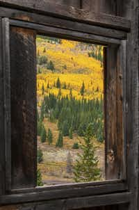 Autumn foliage fills the view from a cabin window at the Banker Mine. Colorado's weathered ghosts of a silvery past provide prime venues for admiring the state's autumn gold.