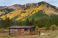 A cabin in Winfield stands against a backdrop of golden aspen. The town grew quickly with lots given to anyone willing to construct a business or dwelling.