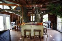 The living room of the Majestic Oak TreehouseSonya Hebert-Schwartz - Staff Photographer