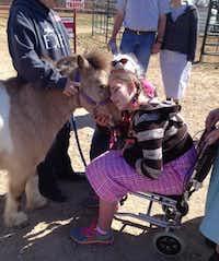 Miranda Nightingale of Oklahoma bonds with Sugar, a miniature therapy horse from Equest at Las Colinas Equestrian Center.Deborah Fleck