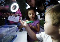 Sarah Friedl, 6, and her brother Pucci, 3, get a up close look at silk worms during a Nocturnal moth watching event at the Texas Discovery Gardens in Dallas, Tuesday, July 24, 2013.