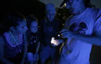 Illuminated by a black light, Texas Discovery Gardens entomologist John Watts, right, shows Anna Glowacki, 11, far left, and Sydney Dacek, 11, second from left, a burrowing bug he captured in a small tube during a Nocturnal moth watching event at  the gardens in Dallas, Tuesday, July 24, 2013.