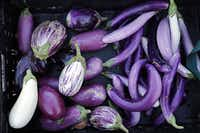 Live Oak Community Garden yields different varieties of eggplant and other vegetables.  The 20-year-old garden, which sits on a one-third plot of land north of downtown, has been donating to food banks for some 15 years.