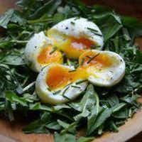 The authors feed their hens dandelion greens to give eggs a rich orange yolk. The couple eats salads of dandelion greens for a nutritional boost.