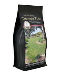 Native American Seed near San Antonio sells a mix of native grasses called Thunder Turf.