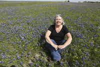 PerriAngela Wickham is in her element in the spring, when bluebonnets beckon the Virginia resident home to Texas to catalog the best bluebonnet sites.
