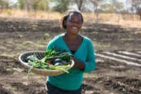 Maitidah Nyemba carries a basket of vegetables brown in Nsongwe, Zambia. In addition to feeding the village, the project produces a big enough crop to sell some for income.