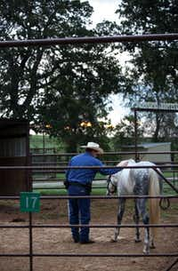 Deputy Paul Stroud patted a horse after feeding it at the livestock center.