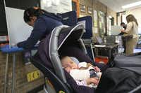 Five-month-old Elinor Smith sleeps though her first presidential election as her mom, Neda Smith votes Tuesday at Reverchon Park Recreation Center in Dallas.Ron Baselice