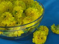 Simmer marigold flowers to create a natural dye.Anthony Deffina